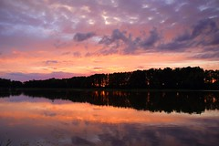 summer moods (JoannaRB2009) Tags: stawymilickie miliczponds pond staw sunset reflections water sky clouds nature landscape view lowersilesia dolnyśląsk dolinabaryczy riverbaryczvalley polska poland summer