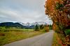 Fall Folliage Near Garmisch, Germany