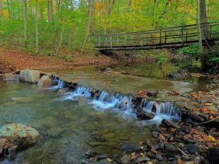 Morgan Run, Autumn Scene