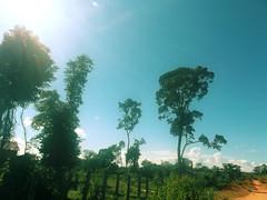 RorestSide in Ratanakiri