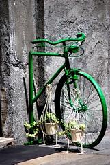 200 years of environmental sustainability (dagherrotipista) Tags: bicycle birthday anniversario bicicletta sostenibilità ambiente nikond60 green verde bicicleta bici bike velo