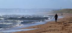 Alone on the beach (PeskyMesky) Tags: aberdeen blackdog blackdogbeach beach sand water ocean sea storm scotland flickr landscape