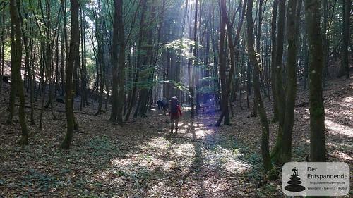 Bloggerwandern Rheinland-Pfalz mit Trekking Pfälzer Art