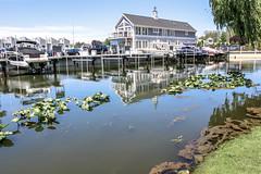 New Buffalo Harbor II