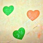 _DSC9968_v1 thumbnail