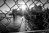 NYC - FDR Drive (TS_1000) Tags: sw bnw 28mm summilux q leica fdrdrive manhattanbridge manhattan newyork