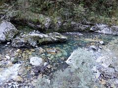 DSCF9158 (Corrado Riva) Tags: valtaleggio orrido frana natura acqua limpida