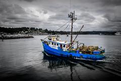 Fishing Boat (rdpe50) Tags: selectivecolour fishing boat crabs traps ocean coast pacificnorthwest overcast blue newport oregon