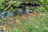 Lightning River / Afon Mellte (cmw_1965) Tags: afon river mellte brecon beacons national park powys fforest fawr waterfalls walk wales water reflection porthyrogof porth yr ogof ystradfellte pontneddfechan nedd neath