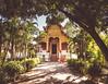 Wat Phra Singh, Chiang Mai (jake!0) Tags: thailand temple wat phra singh chiang mai monk tree sun shadow ornate travel