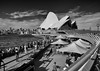 Life outside the Opera House (gabrielfiuza) Tags: sydney australia blackwhite blackandwhite town travel sky architecture city sea skyline street people