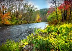 Hardwick, MA Stream (Joe Rito) Tags: canong1x canon color autumn leaves