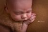 Santino 14 días (Lilia Pereira PH) Tags: babyphotography newbornphotography newborn newbornphotographer newbornphoto newbornargentina newbornbaby nature liliapereiraph love liliapereiraphotography naturallight quilmes quilmescentro minifoxphotography minifox maternidad maternity lactancia