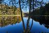 Rutenmühle (Augenweide17) Tags: wasser see herbst romantik ruhe farben träumen natur licht teich mühle schwalingen hahnenbach