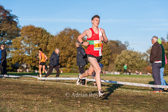 DSC_0167 (Adrian Royle) Tags: mansfield berryhillpark sport athletics running racing relays xc crosscountry ecca nationalcrosscountryrelays athletes runners action clubs park autumn nikon