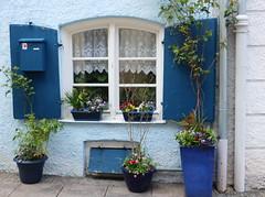 The blue window (Raffa2112) Tags: finestra blu fiori tendina baviera bayern bavaria window blue curtain flowers canoneos750d raffa2112