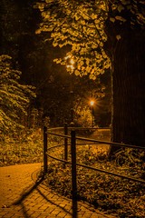 Evening walk from Wernigerode Castle to the city (jörg opfermann) Tags: wald shadow schatten laterne lantern licht light spaziergang walk evening abend wernigerode germany deutschland langzeitbelichtung long exposure hdr fe 7m2 ilce sony harz