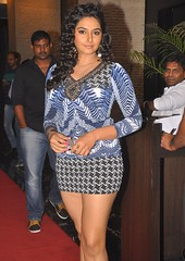 Indian Actress Ragini Dwivedi Images Set-1 (55)
