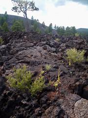 594-14-P9141279 (vgwells) Tags: sedona arizona grand canyon national park scottsdale montezuma castle jerome verde railroad sunset crater wupatki