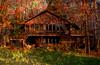 The House in the Woods (bethrosengard) Tags: bethrosengard photomanipulation digitallyenhanced photoart digitalmagic digitalart