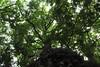 10348374_817112161647476_5218317600898417400_n (yochicontli.crb) Tags: fotografia efímero alma vida cotidianidad