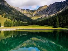 Seealpe (almresi1) Tags: bavaria wasser water see lake mountains berge alps allgäu spiegelung reflections tannen bäume trees rocks felsen nebelhorn