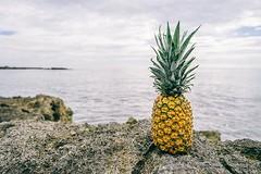 Pick The Perfect Pineapple (Food Town VI) Tags: freshfruit pineapple