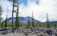 2017 Pac NW Lassen Volcanic-53 (Michael L Coyer) Tags: parks nationalparks usnationalparks unitedstatesnationalparks lassenvolcanicnationalpark lassen lassenvolcanic lassenvolcanicnatlpark mountain mount wilderness forest