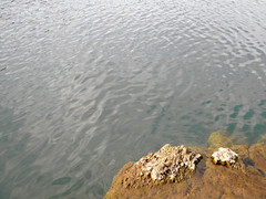Water and rock (Alveart) Tags: guatemala atitlan lagoatitlan solola atitlanlake panajachel suramerica southamerica latinoamerica latinamerica centroamerica centralamerica alveart luisalveart tropics tropico santacatarinapalopo sanantoniopalopo sanlucastoliman palopo cerrodeoro volcansanpedro sanpedrovolcano volcantoliman tolimanvolcano highlands atitecoguatemala