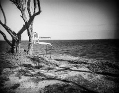 Avalon Beach (Anjella Roessler) Tags: avalonbeach trix chair beach water debonair fpp toycamera vignette rodinal homedevelopment kodak kodakfilm kodaktrix film filmisnotdead filmphotography filmphotographyproject