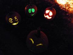 P1280927 (amiterangi1) Tags: jackolanterns halloween governorsisland newyorkharbor pumpkins