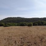 Free State National Botanical Garden - Bloemfontein thumbnail