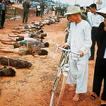 Vietnam War 1968 - Onlookers Walking Past Row of VC Corpses thumbnail