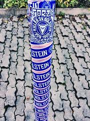 Forza Holstein ⚽️ (Frau D. aus D.) Tags: bundesliga fankult sticker aufkleber white weis blue blau forza störche soccer fusball holsteinkiel balticsea ostsee schleswigholstein kiel