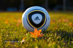 The Beautiful Game 1 (jah32) Tags: thebeautifulgame jabulani balls soccer fifa soccerball sports games football pitch soccerpitch light goldenlight leaf mapleleaf