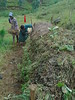 Improved compost preperation (isfm ethiopia) Tags: amhara sinan organic fertilizer improved compost