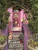 San Francisco, CA, Noe Valley, Colorful Victorian Front Entrance (Mary Warren 9.6+ Million Views) Tags: sanfranciscoca noevalley architecture building house residence victorian pink purple violet gate wroughtiron door entrance frontyard nature green flora plants
