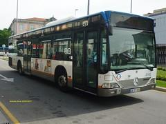 2182_STCP (antoniovera1) Tags: stcp porto