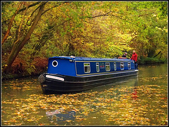 Autumnal blossom? (Jason 87030) Tags: canal boat narrowbaot guc grandunioncanal leaves autumn season fall orange yellow green red blus color colout man woman lady boaters leisure craft vessel northants northamptonshire towpath welston trees branches trunks water crt october light 2017 burmeseblossom