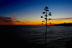 Sitges sunset (ole_G) Tags: spain sitges