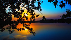 A Very Maple Sunset (Bob's Digital Eye) Tags: 2017 bobsdigitaleye canon canonefs1855mmf3556isll flicker flickr foliage h2o lake lakesunset lakescape leaves organicpattern silhouette sunset t3i water laquintaessenza sky soft10 l