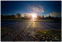 NOVEMBER 2016  NM1_1541_016272-223 (Nick and Karen Munroe) Tags: sun sunlight sunrise dawn daybreak daylight traintracks train rail railway railwaycrossing fall fallcolors fallsplendor fallcolours leaves canada clouds color colors colours beauty brampton beautiful brilliant blue ontario outdoors ontariocanada openroad nikon nickmunroe nickandkarenmunroe nature nickandkaren nikon1424f28 1424 nikontrinity nikond750 d750 munroedesignsphotography munroedesigns munroephotography munroe karenick23 karenandnickmunroe karenmunroe karenandnick karen