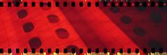 Redscale windows (No Stone Unturned Photography) Tags: redscale kodak folding expired ferrania 400 35mm film sprocketholes architecture windows phoenix hospital building jiffy camera art deco 1933 six16 616 panoramic