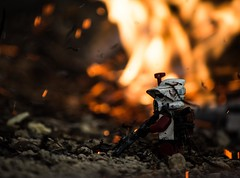 Remnants of War (Worn Out Trooper) Tags: lego starwars legostarwars legoguys legos legominifig legominifigure legit outdoors outdooor outdoor boka clone clonetrooper clones clonewars commander custom scout fire firstblood flickr field