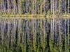 Banff (brettbuchanan1) Tags: banff canada lakemoraine