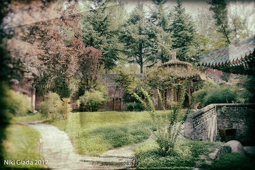 Shaolin Temple - The secret garden
