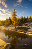 DSC08183 (www.mikereidphotography.com) Tags: larches fallcolors autumn canada canadianrockies lakemoraine larchvalley sentinelpass 85mm otus zeiss mirrorless a7r2 landscape golden