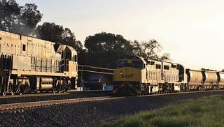 NR63 passes C506 and C504 in Horsham Loop in setting sun