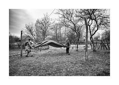 Cleanup (Jan Dobrovsky) Tags: 21mm biogon leicam people reallife outdoor rural countryside leica monochom monochrome blackandwhite volyn ukraine village countrylife document garden
