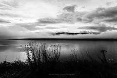 Loch Ness (Passie13(Ines van Megen-Thijssen)) Tags: schotland schottland scotland scozia écosse lochness loch see clouds blackandwhite bw sw zw zwartwit monochroom monochrome monochrom fineart nature canon inesvanmegen inesvanmegenthijssen morning highlands